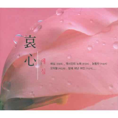 박선주 (Pak Sun Zoo) - 애심 (哀心) 앨범이미지