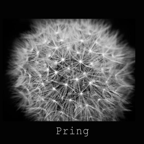 프링 (Pring) - 겨울밤 앨범이미지