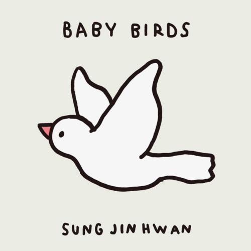 성진환 - BABY BIRDS 앨범이미지