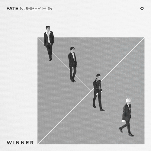 FATE NUMBER FOR 앨범이미지