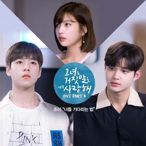 조이 (JOY) - 그녀는 거짓말을 너무 사랑해 OST Part.8 앨범이미지