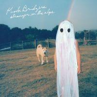 Phoebe Bridgers - Stranger in the Alps [Deluxe Edition] 앨범이미지