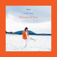 펀치 (Punch) - Dream of You 앨범이미지